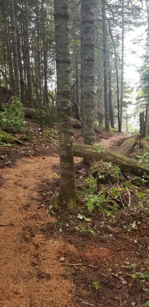 hiking on the peninsula
